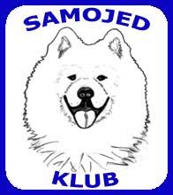 Samojed klub